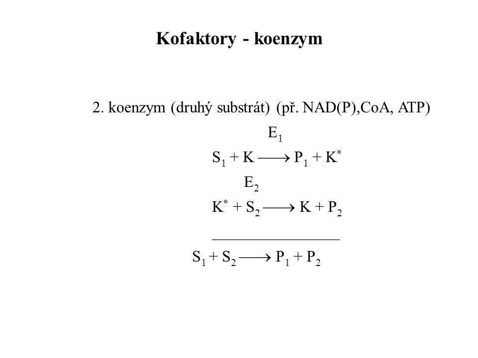 2. koenzym (druhý substrát) (př. NAD(P),CoA, ATP) E 1 S 1 + K  P 1 + K * E 2 K * + S 2  K + P 2 ________________ S 1 + S 2  P 1 + P 2 Kofaktory