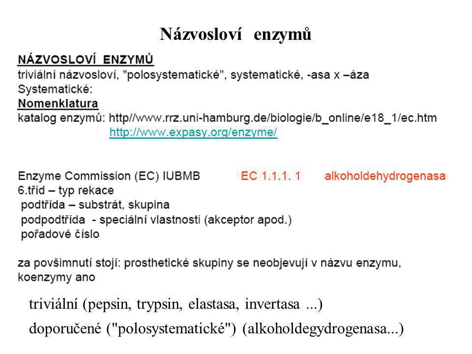 triviální (pepsin, trypsin, elastasa, invertasa...) doporučené (