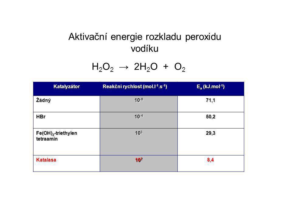 Katalyzátor Reakční rychlost (mol.l -1.s -1 ) E a (kJ.mol -1 ) Žádný 10 -8 71,1 HBr 10 -4 50,2 Fe(OH) 2 -triethylen tetraamin 10 3 29,3 Katalasa 10 7