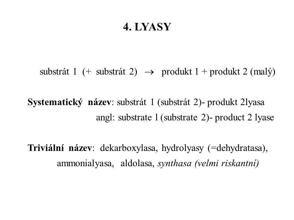 substrát 1 (+ substrát 2)  produkt 1 + produkt 2 (malý) Systematický název: substrát 1 (substrát 2)- produkt 2lyasa angl: substrate l (substrate 2)-