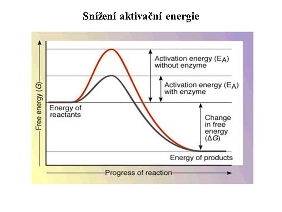 Snížení aktivační energie