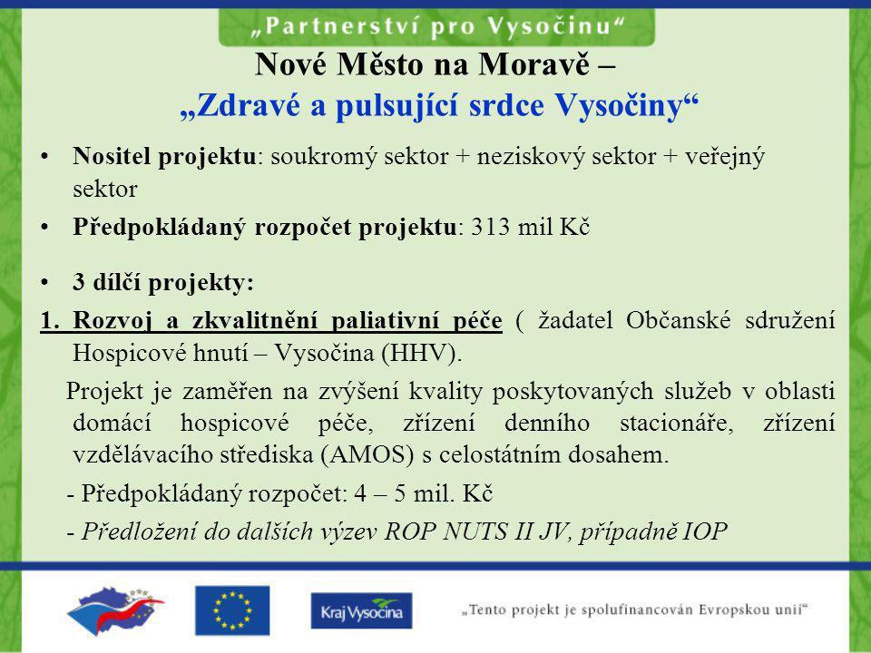 """Nové Město na Moravě – """"Zdravé a pulsující srdce Vysočiny"""" •Nositel projektu: soukromý sektor + neziskový sektor + veřejný sektor •Předpokládaný rozpo"""