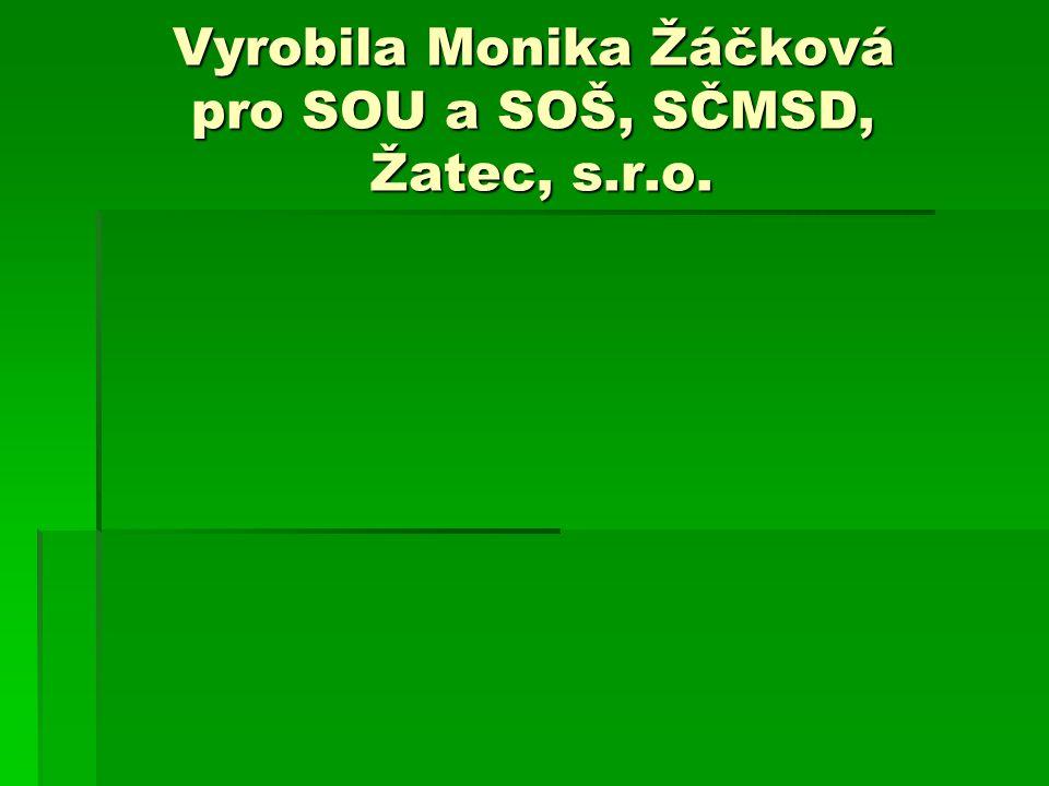 Vyrobila Monika Žáčková pro SOU a SOŠ, SČMSD, Žatec, s.r.o.