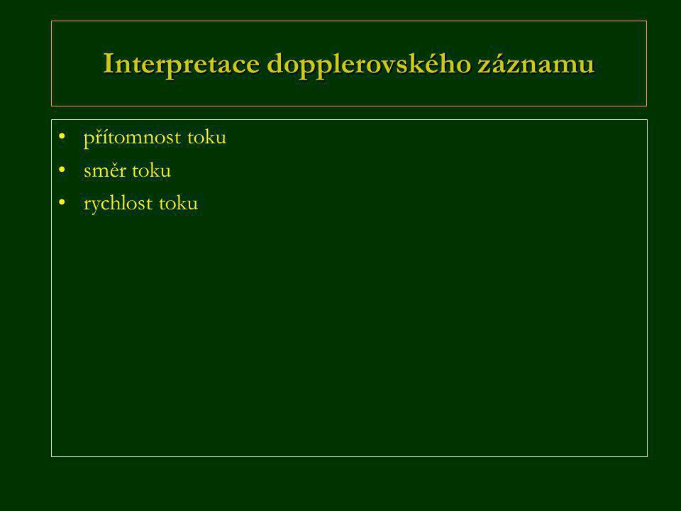 Interpretace dopplerovského záznamu •přítomnost toku •směr toku •rychlost toku