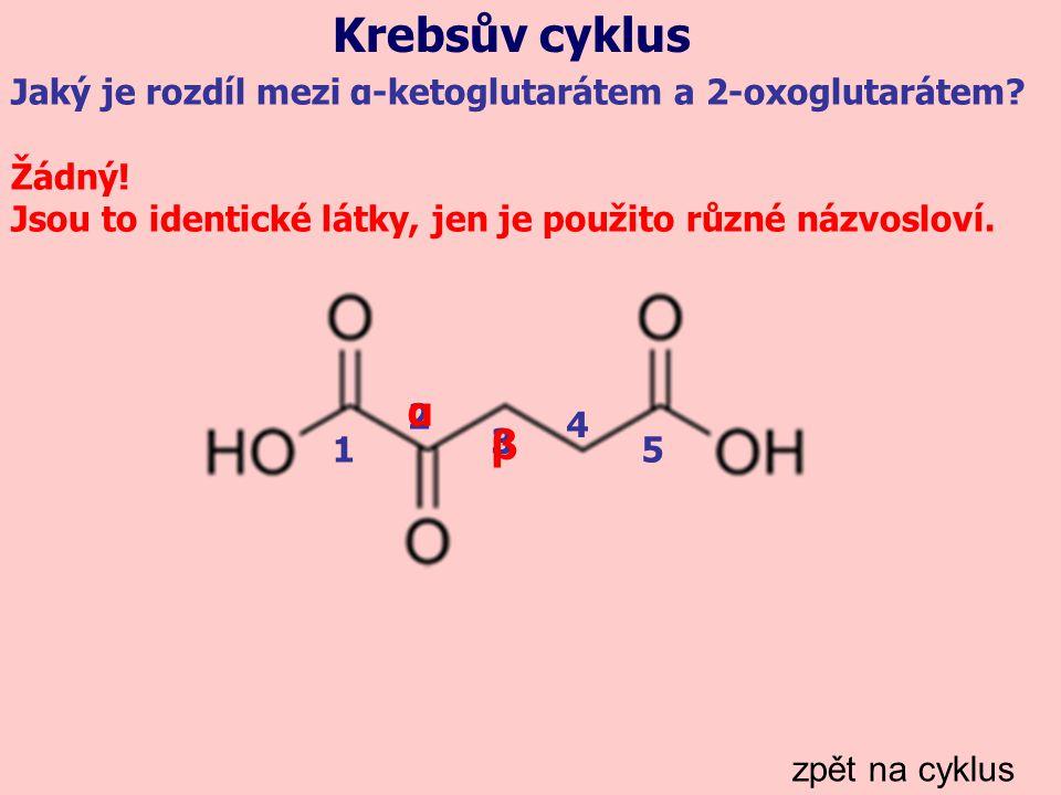 Krebsův cyklus zpět na cyklus Jaký je rozdíl mezi α-ketoglutarátem a 2-oxoglutarátem? Žádný! Jsou to identické látky, jen je použito různé názvosloví.