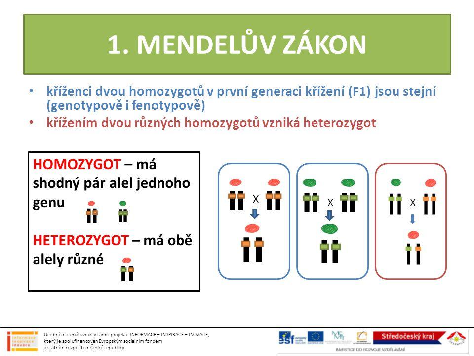 1. MENDELŮV ZÁKON • kříženci dvou homozygotů v první generaci křížení (F1) jsou stejní (genotypově i fenotypově) • křížením dvou různých homozygotů vz