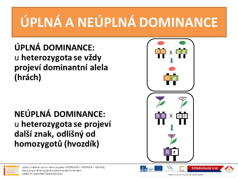 ÚPLNÁ A NEÚPLNÁ DOMINANCE ÚPLNÁ DOMINANCE: u heterozygota se vždy projeví dominantní alela (hrách) NEÚPLNÁ DOMINANCE: u heterozygota se projeví další