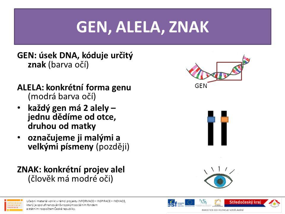 GEN, ALELA, ZNAK GEN: úsek DNA, kóduje určitý znak (barva očí) ALELA: konkrétní forma genu (modrá barva očí) • každý gen má 2 alely – jednu dědíme od