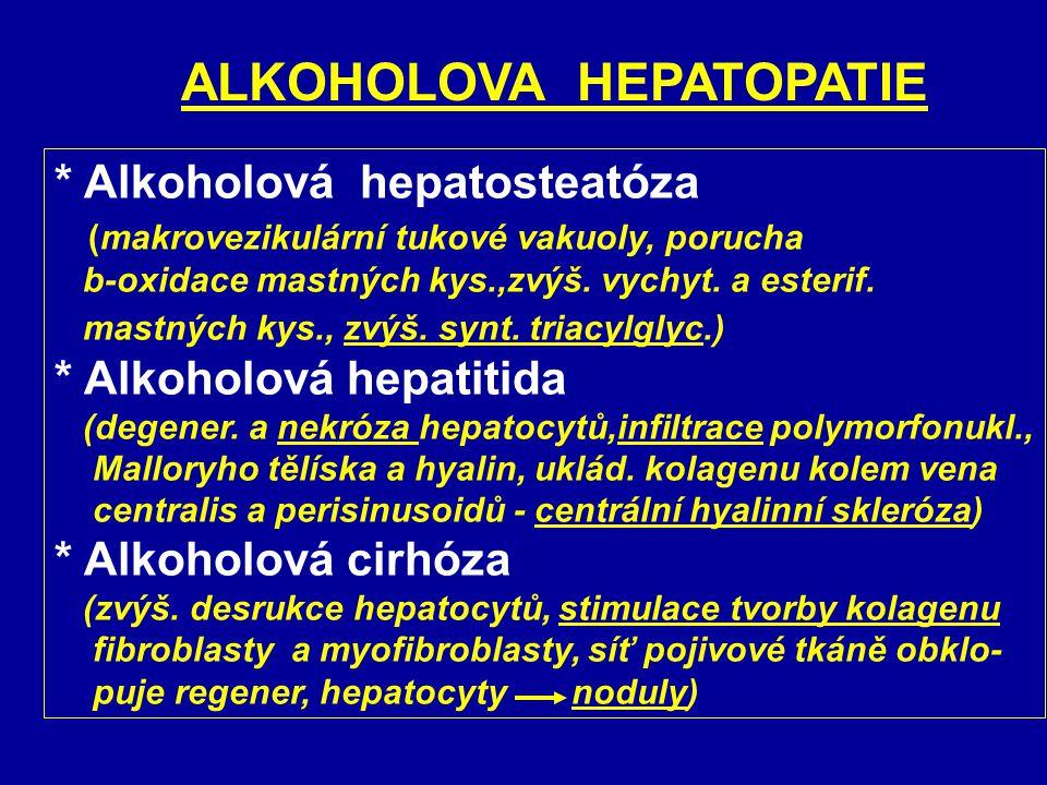 Alkoholová hepatopatie * Ethanol (přímo) - permeabilita a fluidita membrán - fenestrace sinusoid. endotelu - aktivace Kupff. buněk * Acetaldehyd (toxi
