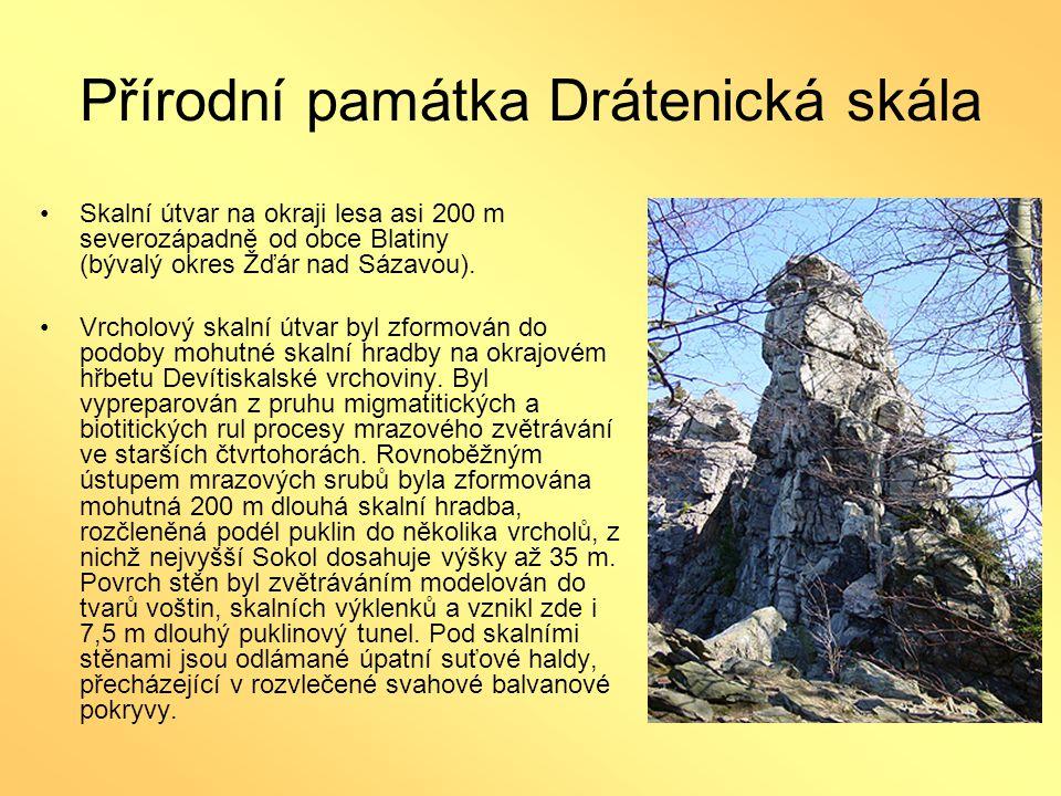 Přírodní památka Drátenická skála •Skalní útvar na okraji lesa asi 200 m severozápadně od obce Blatiny (bývalý okres Žďár nad Sázavou). •Vrcholový ska
