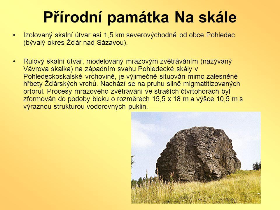 Přírodní památka Na skále •Izolovaný skalní útvar asi 1,5 km severovýchodně od obce Pohledec (bývalý okres Žďár nad Sázavou). •Rulový skalní útvar, mo