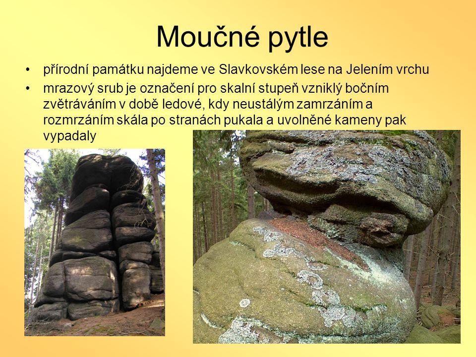 Moučné pytle •přírodní památku najdeme ve Slavkovském lese na Jelením vrchu •mrazový srub je označení pro skalní stupeň vzniklý bočním zvětráváním v d