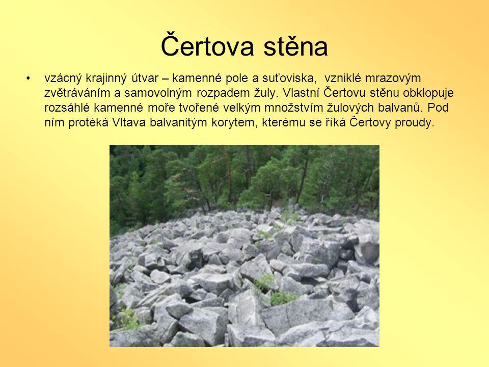 Čertova stěna •vzácný krajinný útvar – kamenné pole a suťoviska, vzniklé mrazovým zvětráváním a samovolným rozpadem žuly. Vlastní Čertovu stěnu obklop