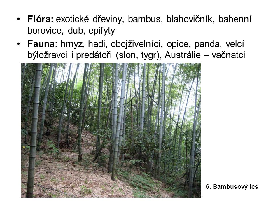 •Flóra: exotické dřeviny, bambus, blahovičník, bahenní borovice, dub, epifyty •Fauna: hmyz, hadi, obojživelníci, opice, panda, velcí býložravci i pred
