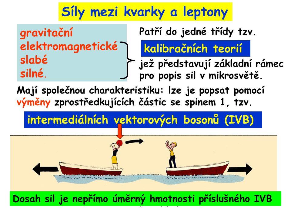21. 5. 2009Filosofické problémy fyziky6 Mají společnou charakteristiku: lze je popsat pomocí výměny zprostředkujících částic se spinem 1, tzv. gravita