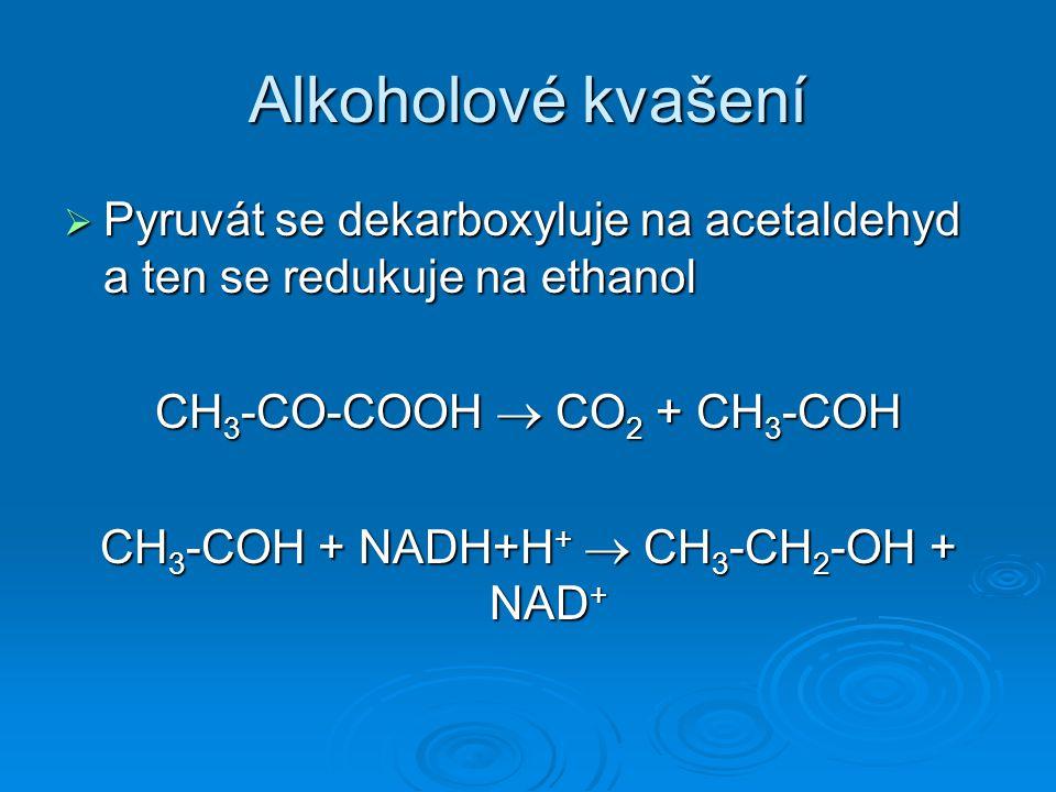 Alkoholové kvašení  Pyruvát se dekarboxyluje na acetaldehyd a ten se redukuje na ethanol CH 3 -CO-COOH  CO 2 + CH 3 -COH CH 3 -COH + NADH+H +  CH 3 -CH 2 -OH + NAD +