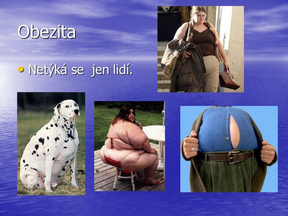 Obezita • Netýká se jen lidí.