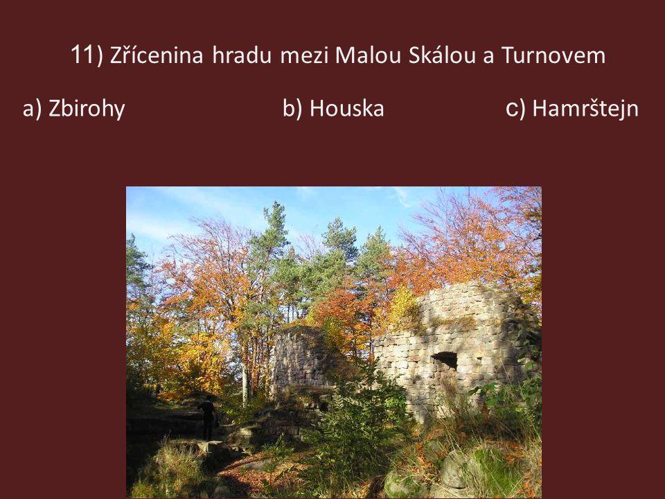11 ) Zřícenina hradu mezi Malou Skálou a Turnovem b) Houskaa) Zbirohy c ) Hamrštejn