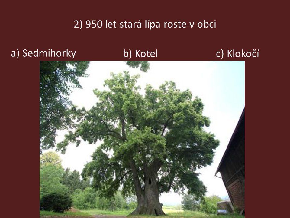 2) 950 let stará lípa roste v obci a) Sedmihorky b) Kotelc) Klokočí