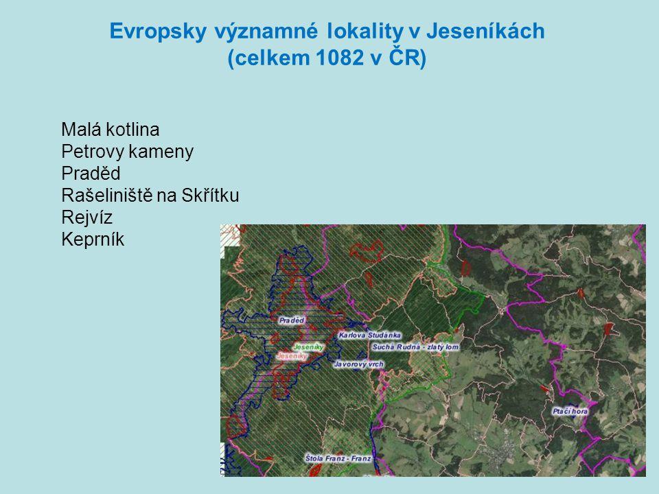 Evropsky významné lokality v Jeseníkách (celkem 1082 v ČR) Malá kotlina Petrovy kameny Praděd Rašeliniště na Skřítku Rejvíz Keprník