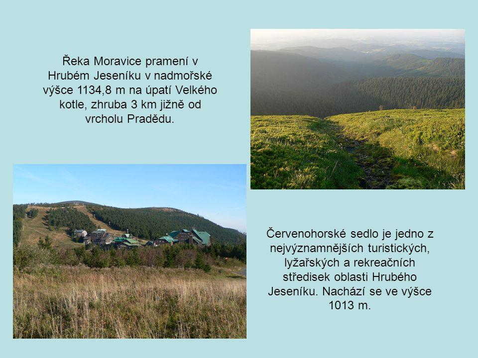 Červenohorské sedlo je jedno z nejvýznamnějších turistických, lyžařských a rekreačních středisek oblasti Hrubého Jeseníku. Nachází se ve výšce 1013 m.