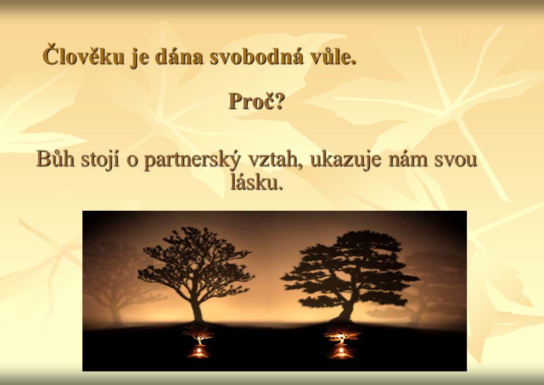 Člověku je dána svobodná vůle. Proč? Bůh stojí o partnerský vztah, ukazuje nám svou lásku.