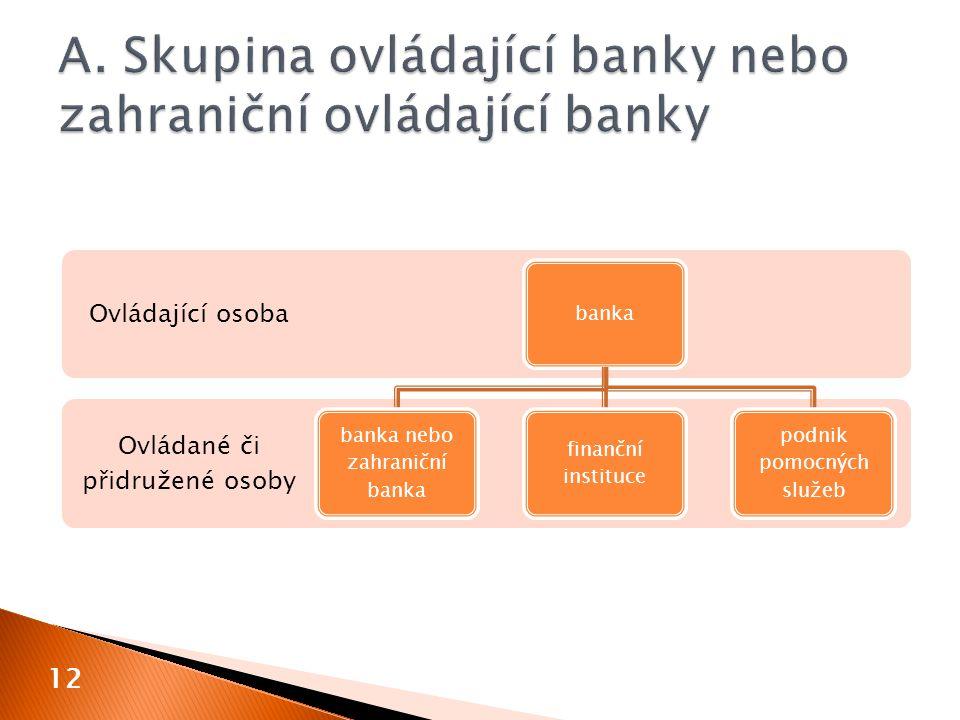 12 Ovládané či přidružené osoby Ovládající osoba banka banka nebo zahraniční banka finanční instituce podnik pomocných služeb