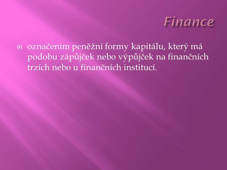  označením peněžní formy kapitálu, který má podobu zápůjček nebo výpůjček na finančních trzích nebo u finančních institucí.