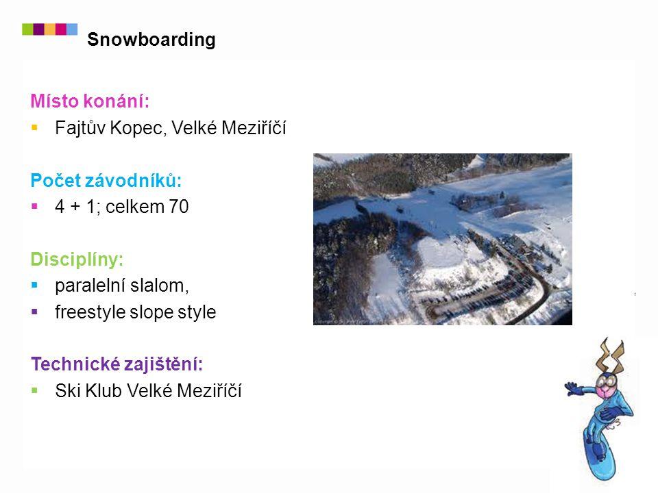 Místo konání:  Fajtův Kopec, Velké Meziříčí Počet závodníků:  4 + 1; celkem 70 Disciplíny:  paralelní slalom,  freestyle slope style Technické zajištění:  Ski Klub Velké Meziříčí Snowboarding