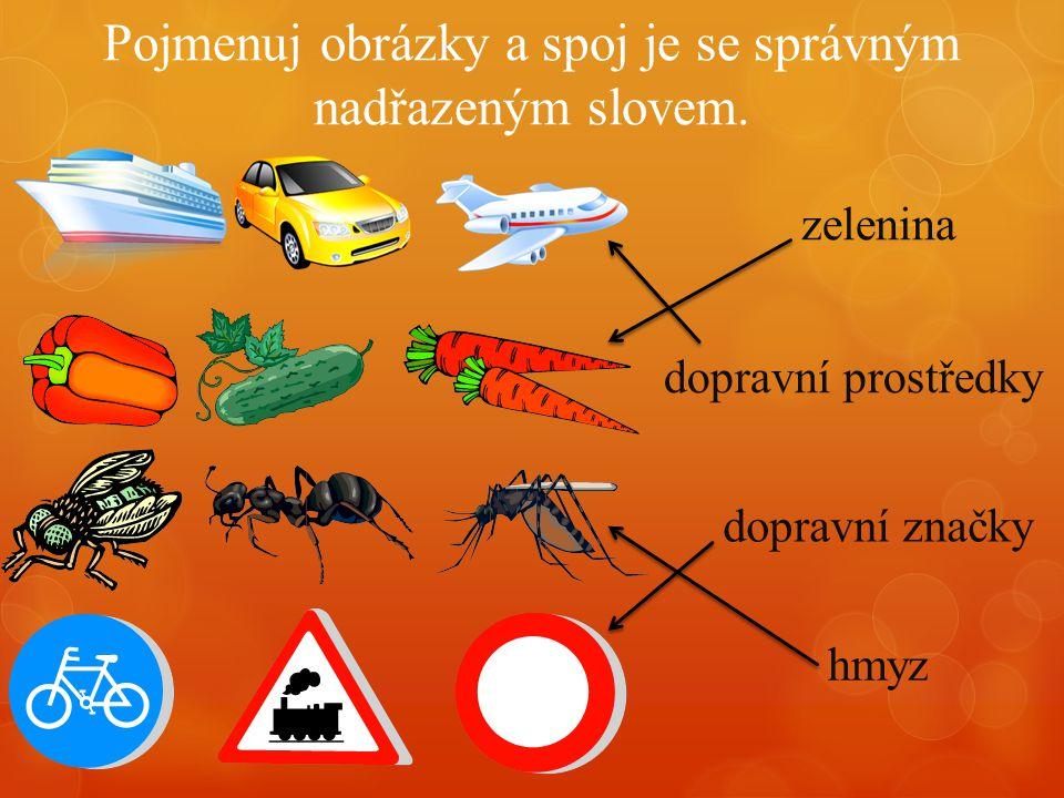 Pojmenuj obrázky a spoj je se správným nadřazeným slovem. dopravní značky hmyz dopravní prostředky zelenina