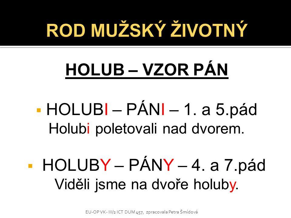 HOLUB – VZOR PÁN  HOLUBI – PÁNI – 1. a 5.pád Holubi poletovali nad dvorem.  HOLUBY – PÁNY – 4. a 7.pád Viděli jsme na dvoře holuby. EU-OP VK- III/2