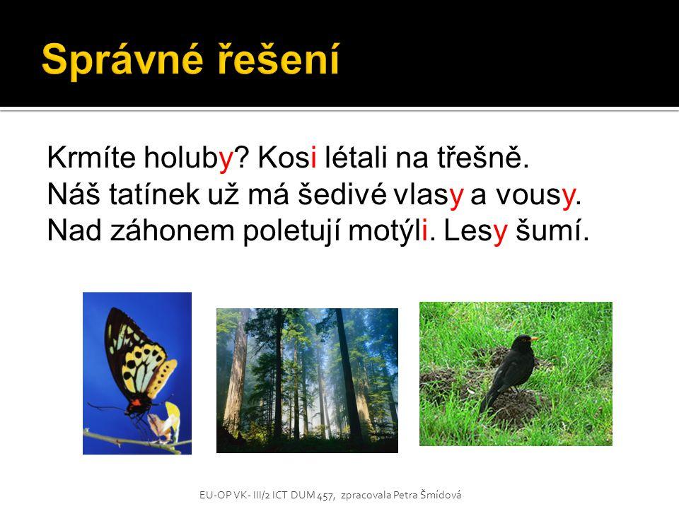 Krmíte holuby? Kosi létali na třešně. Náš tatínek už má šedivé vlasy a vousy. Nad záhonem poletují motýli. Lesy šumí. EU-OP VK- III/2 ICT DUM 457, zpr