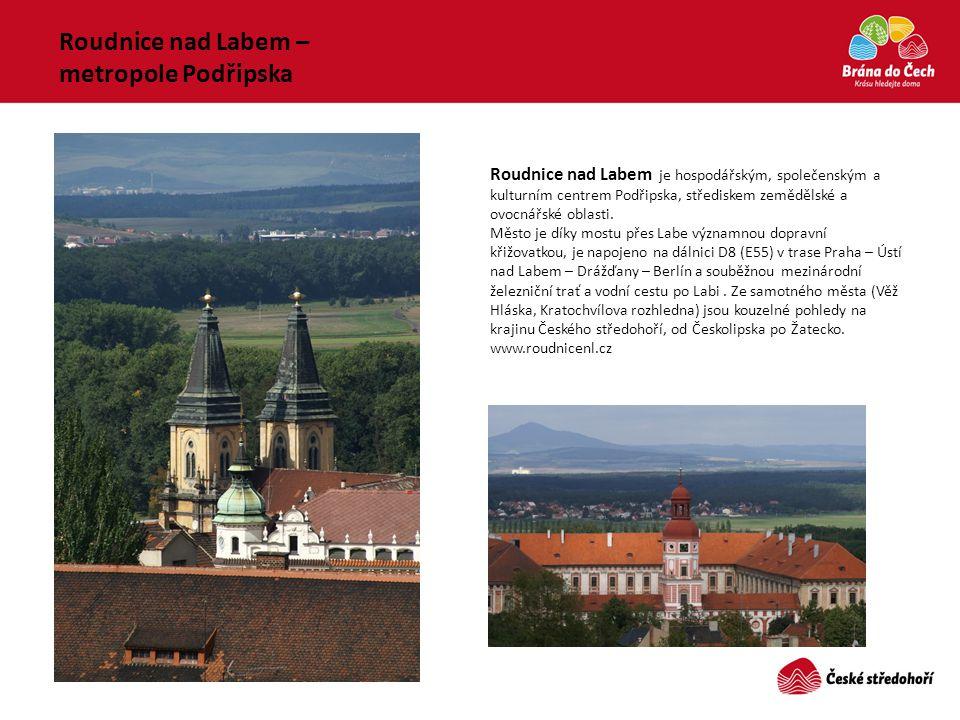 Roudnice nad Labem je hospodářským, společenským a kulturním centrem Podřipska, střediskem zemědělské a ovocnářské oblasti. Město je díky mostu přes L