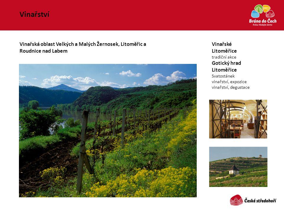 Vinařství Vinařské Litoměřice tradiční akce Gotický hrad Litoměřice Svatostánek vinařství, expozice vinařství, degustace Vinařská oblast Velkých a Mal