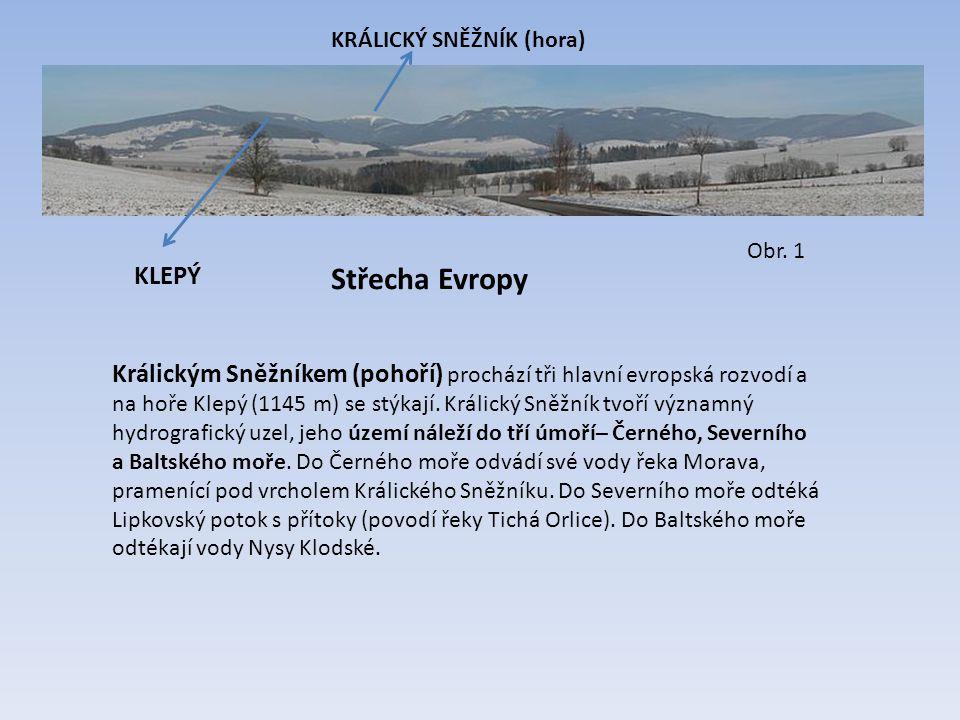 Střecha Evropy Králickým Sněžníkem (pohoří) prochází tři hlavní evropská rozvodí a na hoře Klepý (1145 m) se stýkají. Králický Sněžník tvoří významný