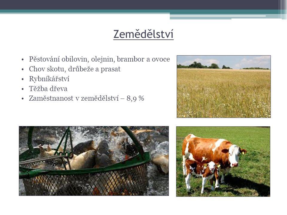 Zemědělství •Pěstování obilovin, olejnin, brambor a ovoce •Chov skotu, drůbeže a prasat •Rybníkářství •Těžba dřeva •Zaměstnanost v zemědělství – 8,9 %