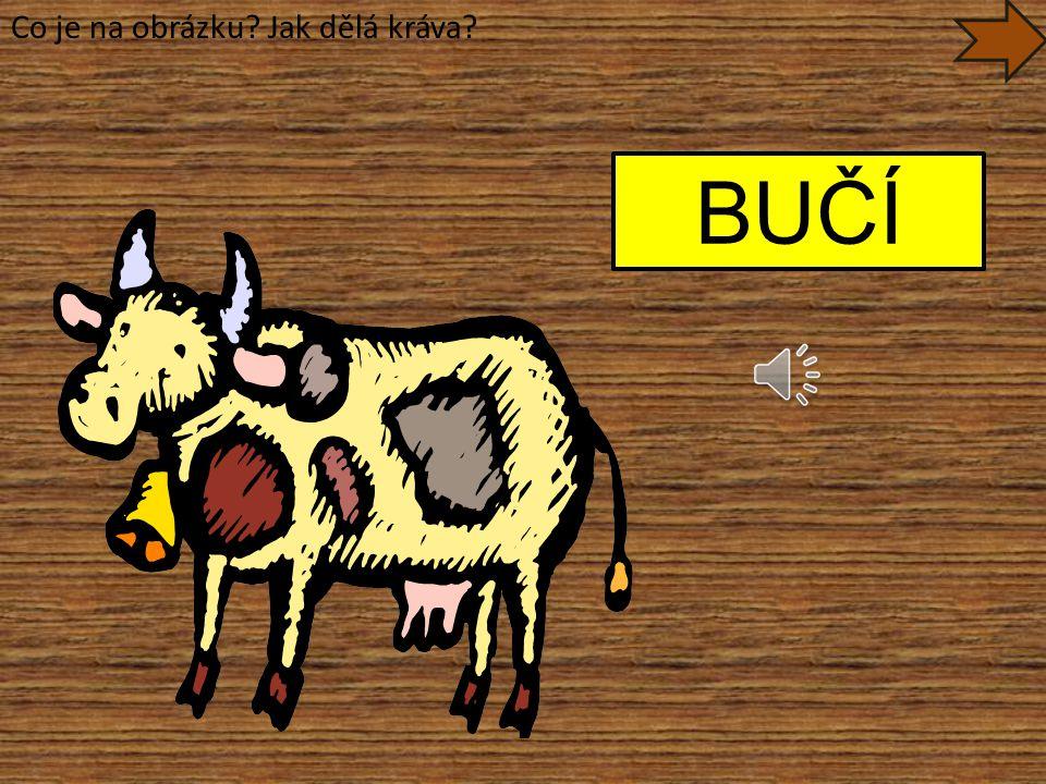Co je na obrázku? Jak dělá kráva? BUČÍ