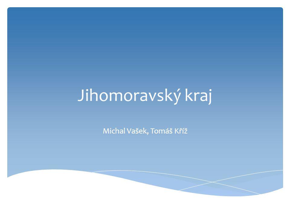 Jihomoravský kraj Michal Vašek, Tomáš Kříž