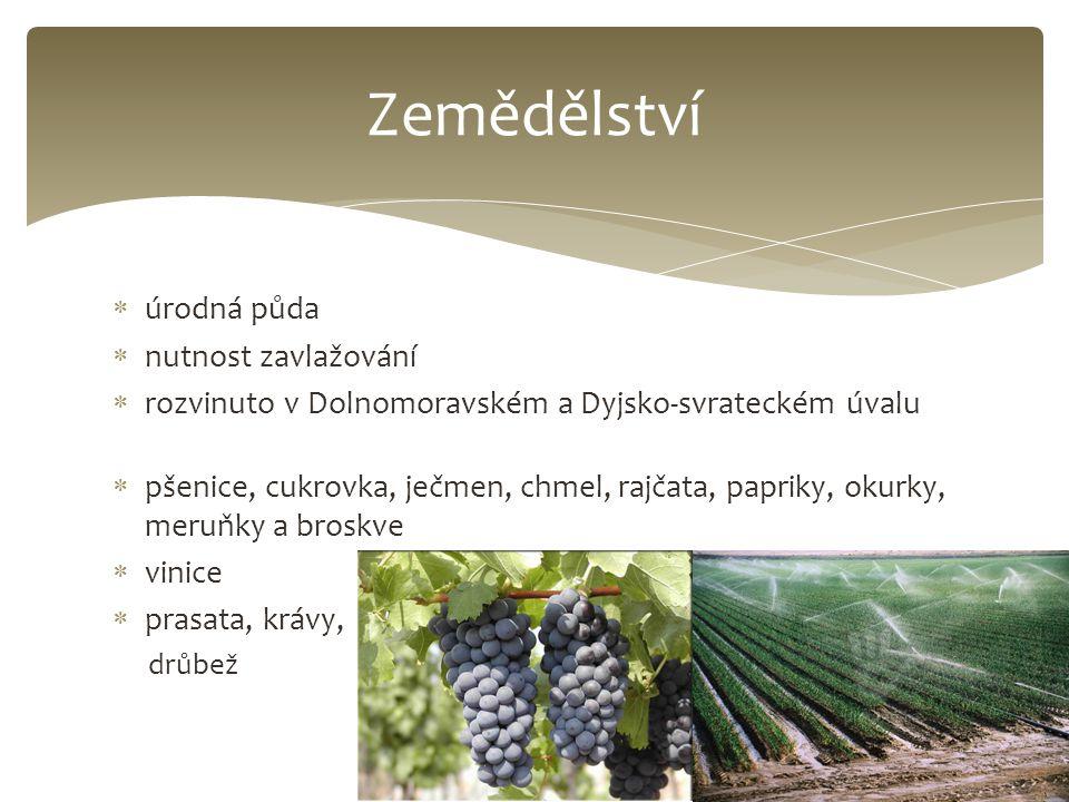  úrodná půda  nutnost zavlažování  rozvinuto v Dolnomoravském a Dyjsko-svrateckém úvalu  pšenice, cukrovka, ječmen, chmel, rajčata, papriky, okurk