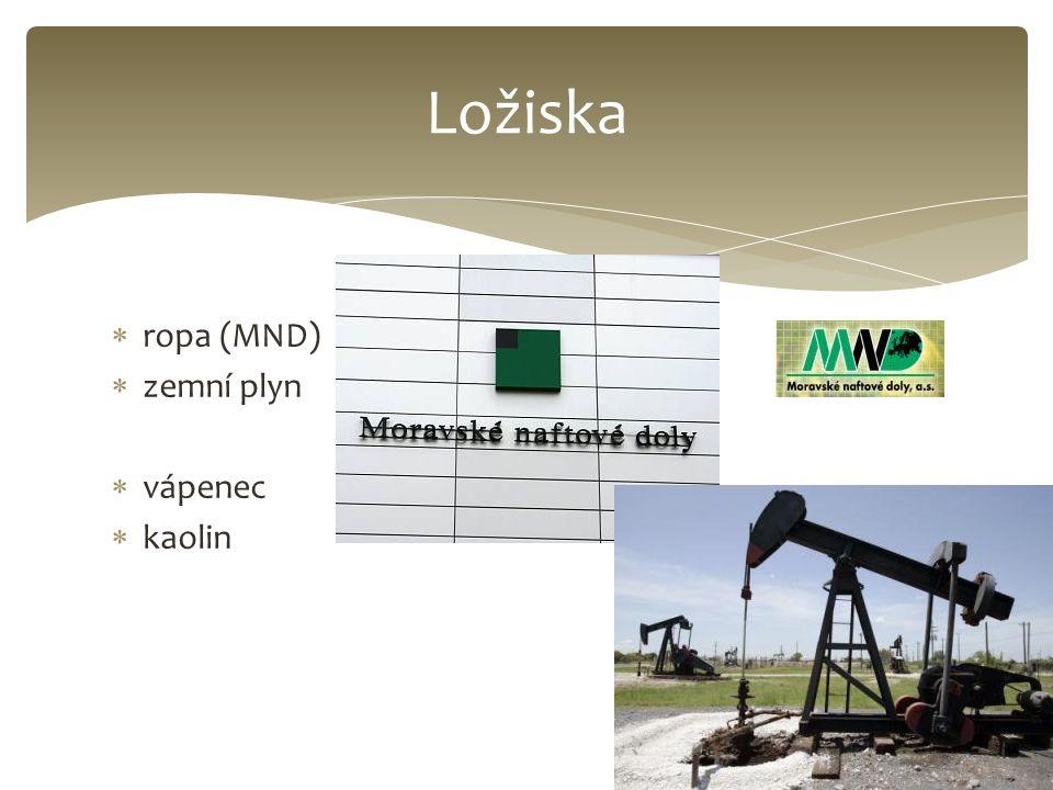  ropa (MND)  zemní plyn  vápenec  kaolin Ložiska