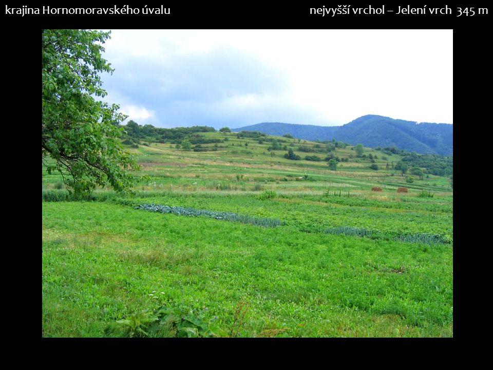 krajina Hornomoravského úvalunejvyšší vrchol – Jelení vrch 345 m