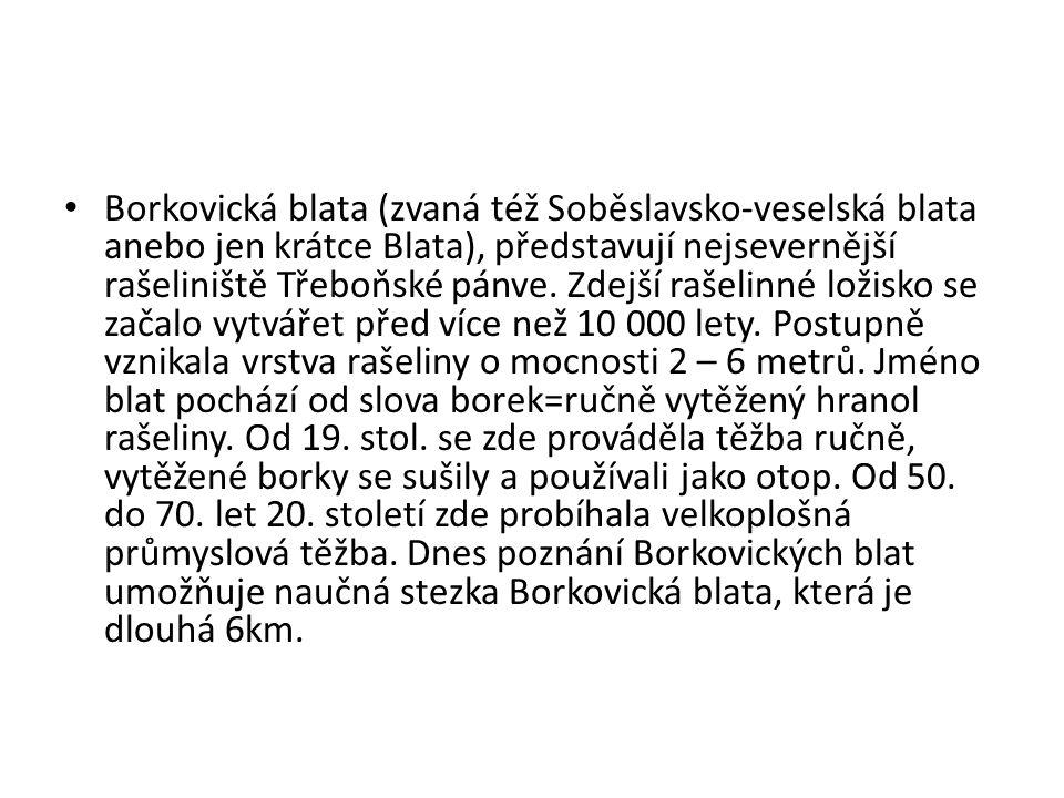 • Borkovická blata (zvaná též Soběslavsko-veselská blata anebo jen krátce Blata), představují nejsevernější rašeliniště Třeboňské pánve. Zdejší rašeli
