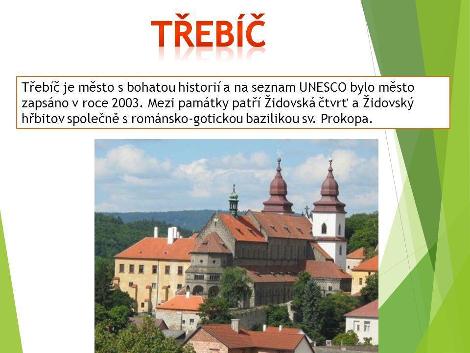 Třebíč je město s bohatou historií a na seznam UNESCO bylo město zapsáno v roce 2003. Mezi památky patří Židovská čtvrť a Židovský hřbitov společně s
