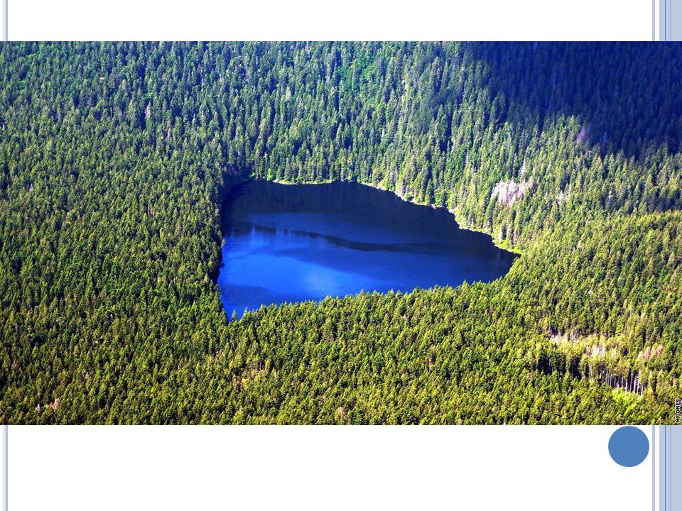 J EZERA V ČR – velmi málo jezer Hlavně na Šumavě – ledovcová jezera Největší – Černé, dále Čertovo, Plešné, Prášilské, Láka
