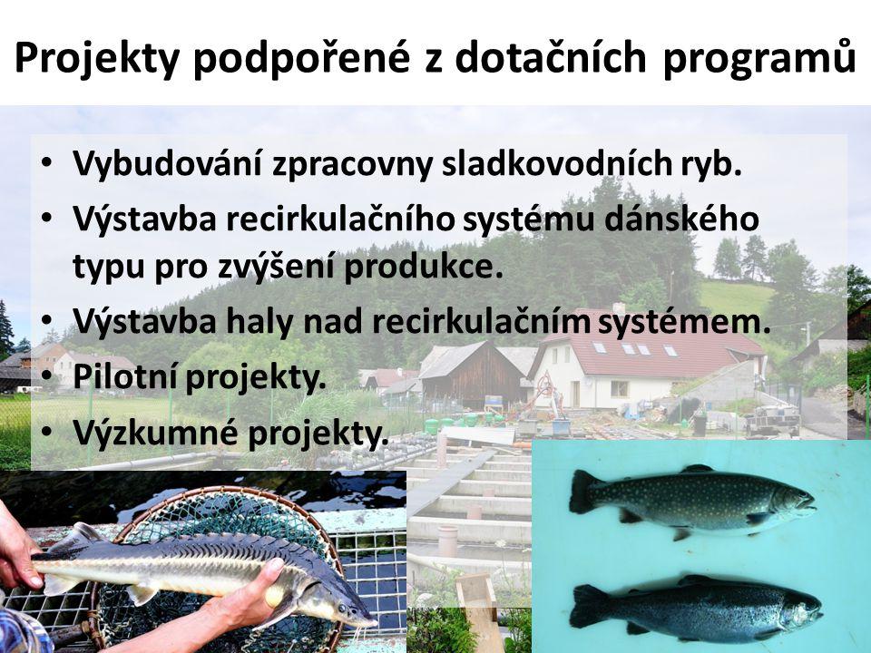 Projekty podpořené z dotačních programů • Vybudování zpracovny sladkovodních ryb. • Výstavba recirkulačního systému dánského typu pro zvýšení produkce