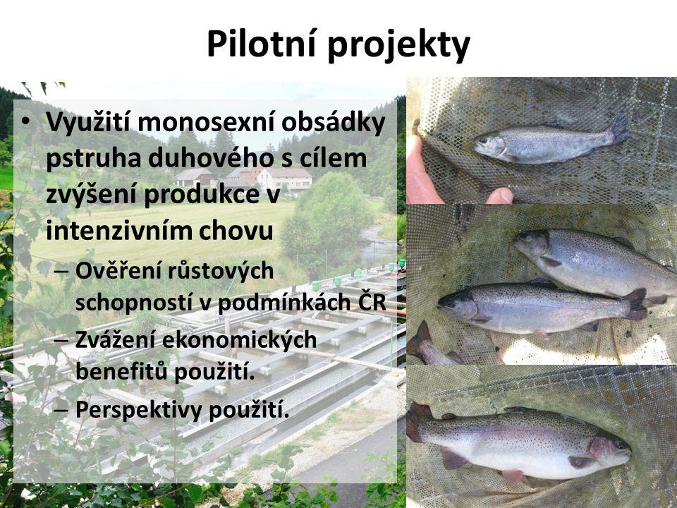 Pilotní projekty • Využití monosexní obsádky pstruha duhového s cílem zvýšení produkce v intenzivním chovu – Ověření růstových schopností v podmínkách