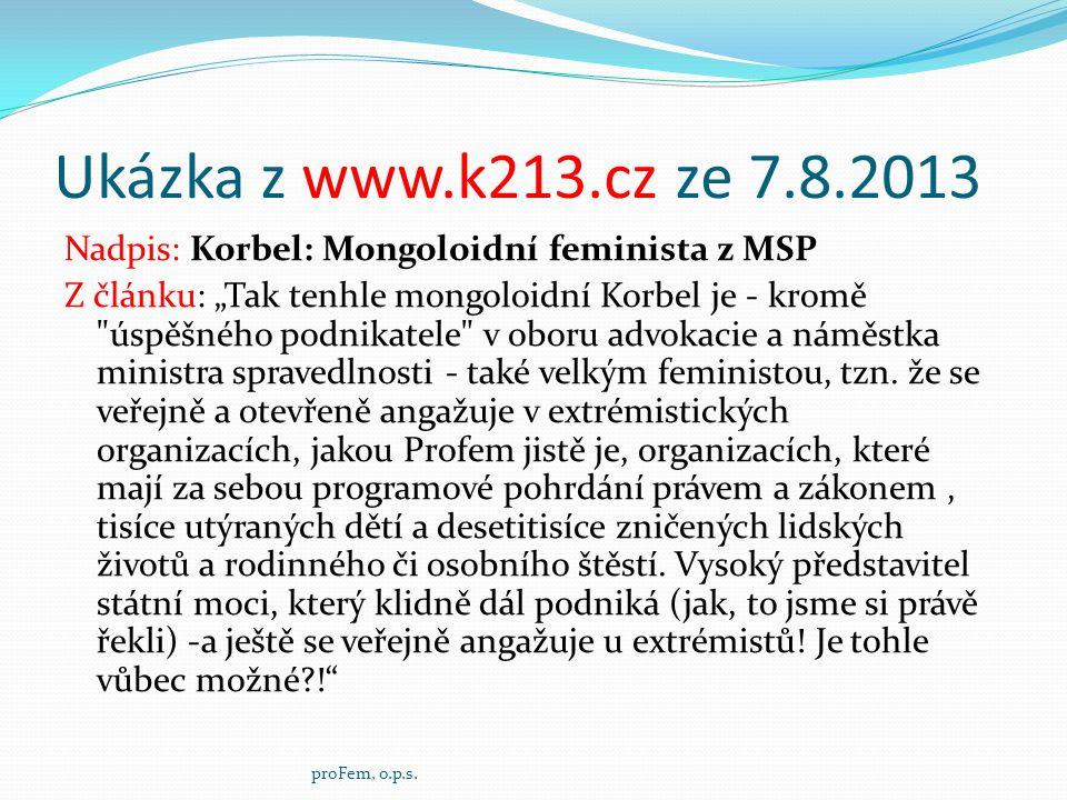"""Ukázka z www.k213.cz ze 7.8.2013 Nadpis: Korbel: Mongoloidní feminista z MSP Z článku: """"Tak tenhle mongoloidní Korbel je - kromě"""
