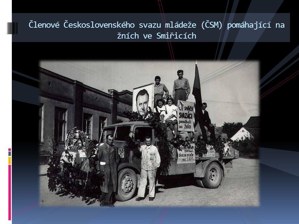 Členové Československého svazu mládeže (ČSM) pomáhající na žních ve Smiřicích