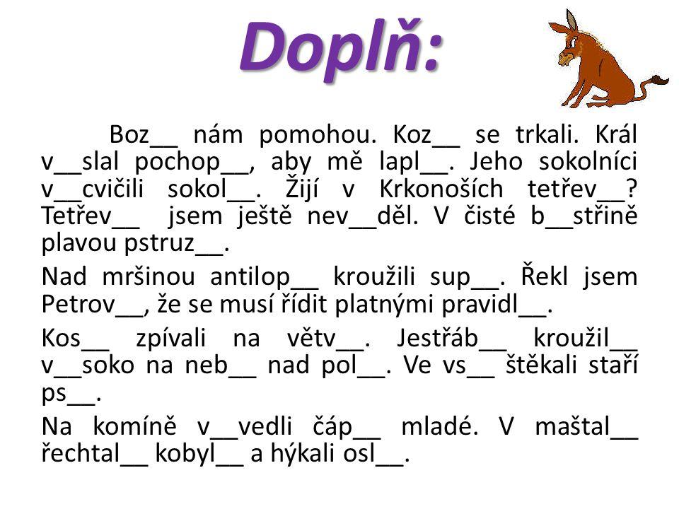 Doplň: Dones našemu psov__ Amorov__ do mís__ pečínku s kuřecími křídl__.