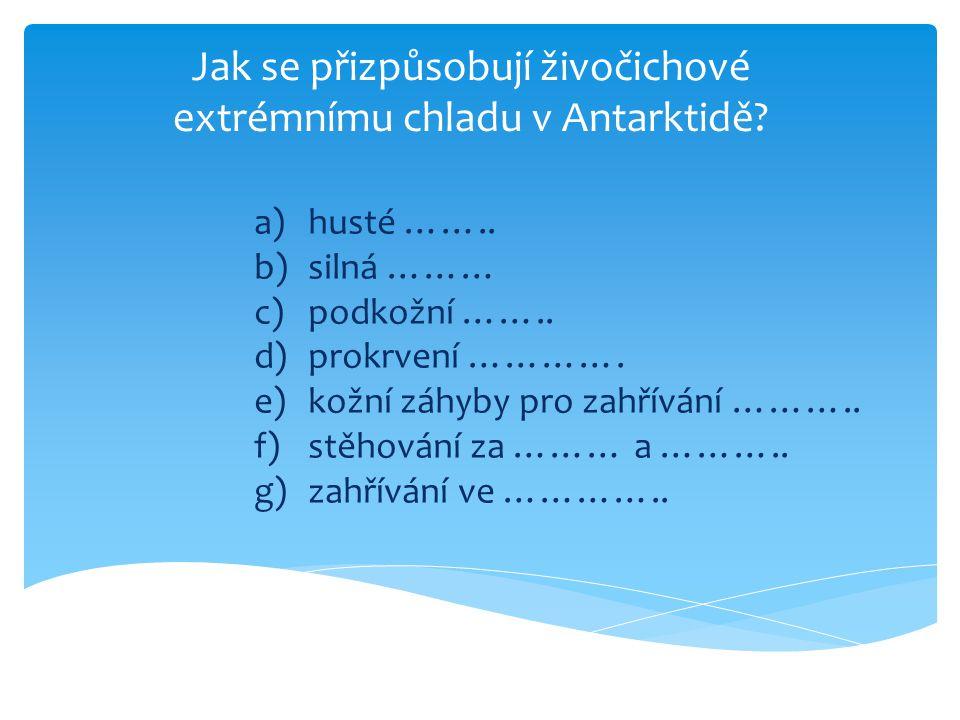 Jak se přizpůsobují živočichové extrémnímu chladu v Antarktidě? a)husté …….. b)silná ……… c)podkožní …….. d)prokrvení …………. e)kožní záhyby pro zahříván